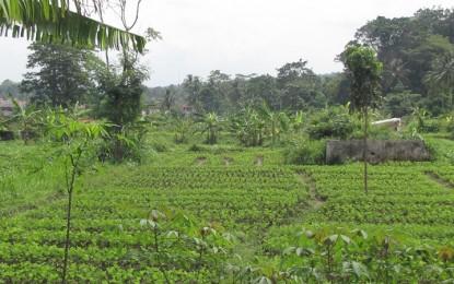 Kemendes Gagas Desa Inklusif